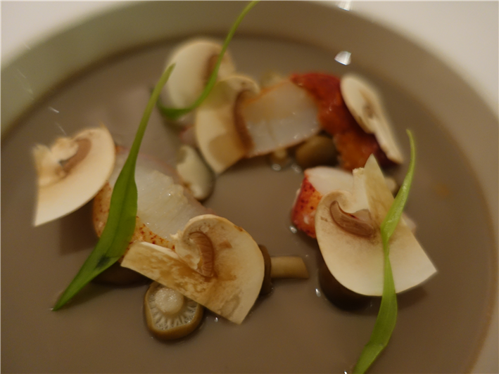 lobster on bed of shiitake chawanmushi