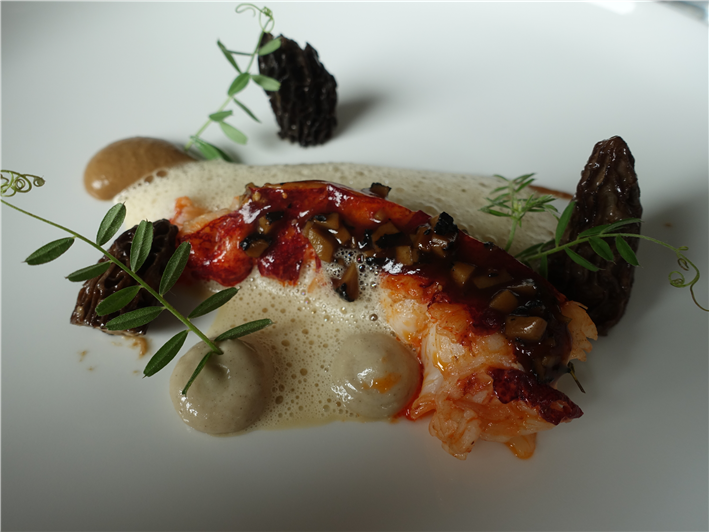 lobster and morels