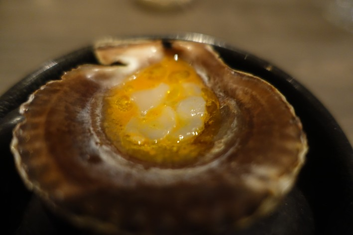scallop with sea buckthorn