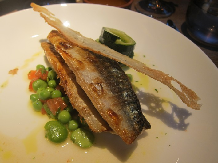 mackerel 2011