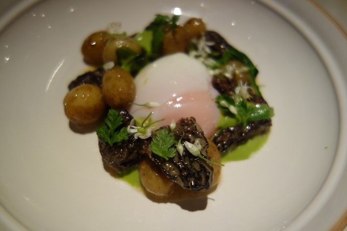 egg and morels