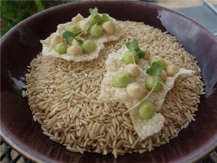 rice cracker with avocado and anchovy