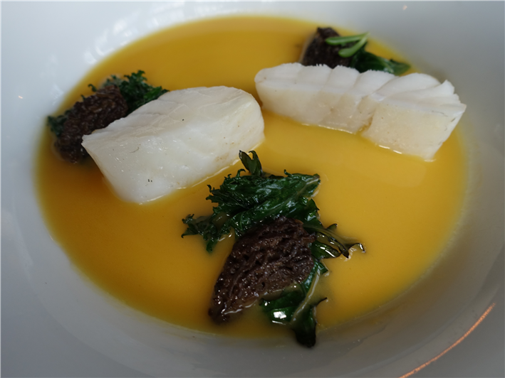 turbot and morels