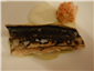 mackerel and radish
