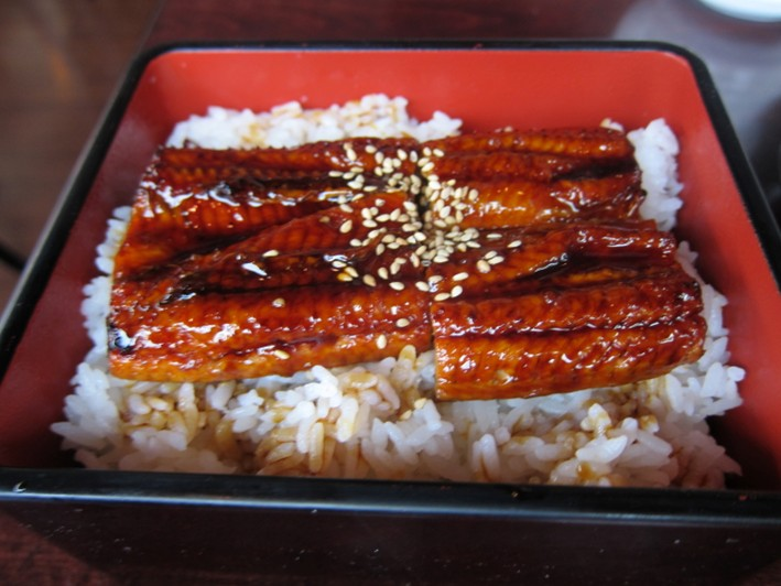 eel on rice