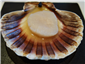 scallop in its own juices