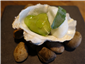 oyster with apple foam