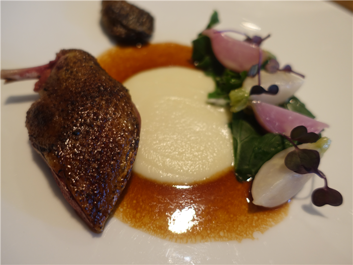 pigeon with radishes