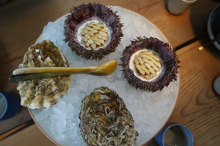 sea urchin and oyster