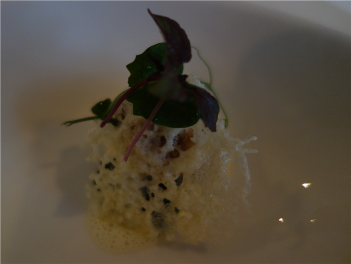 mushroom and risotto bombe with Parmesan foam