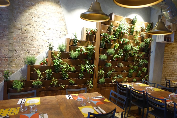 wall of herbs