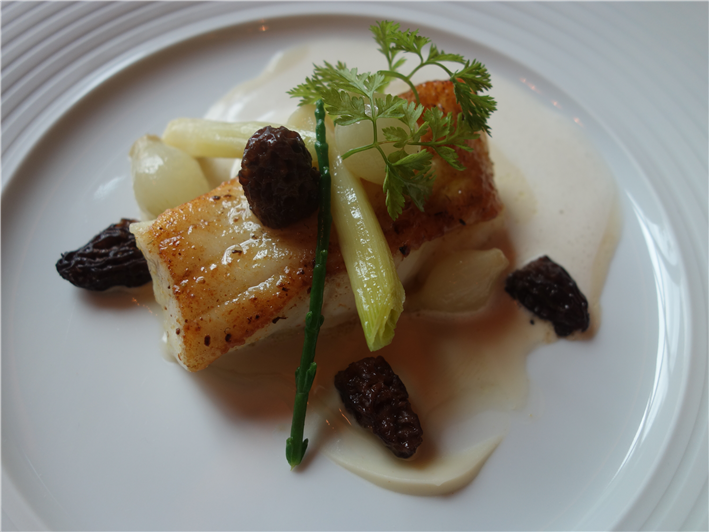 turbot with morels