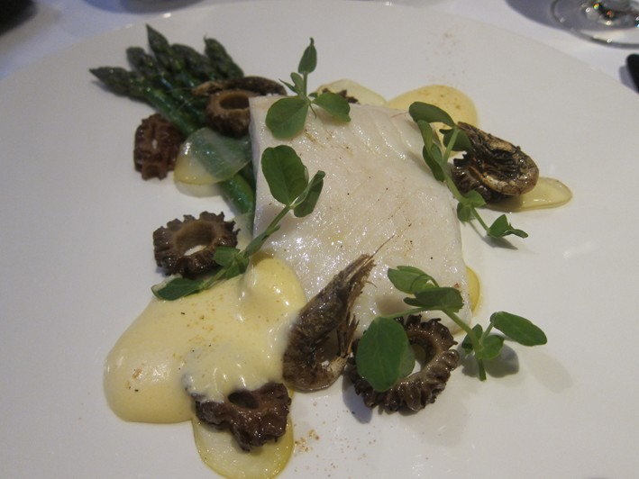 halibut with morels